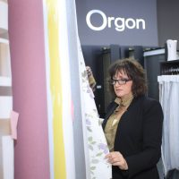 הרצאה ללקוחות של חברת אורגון