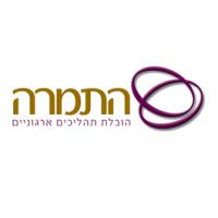 לוגו גלית התמרה